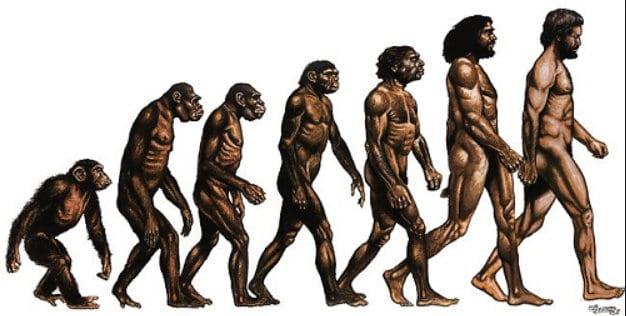 darwinism Charles Darwin portrait