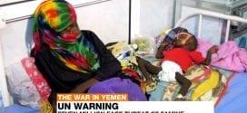 Yemen Al Jazeera Herland Report