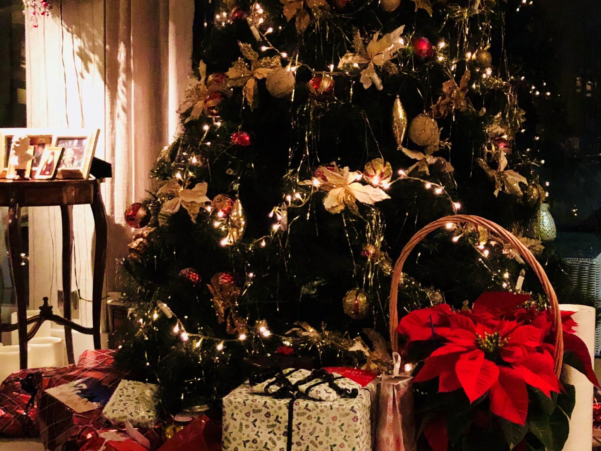 Christmas Herland Report